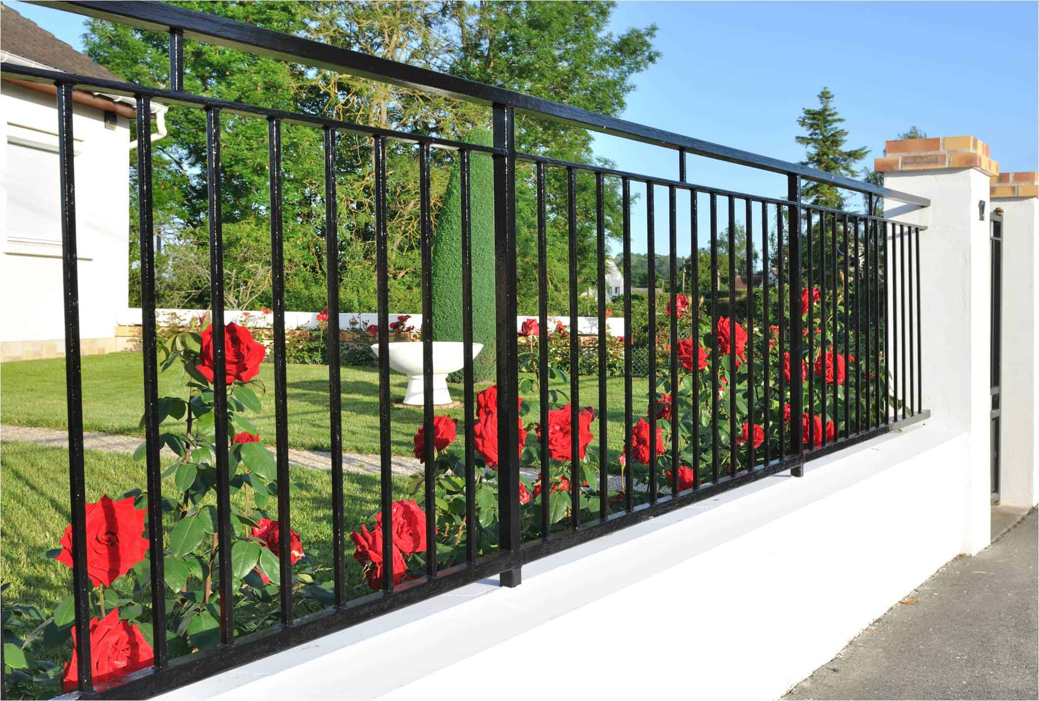 Elk Grove iron fence